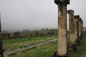 Colonnes à Volubilis, by Safaa